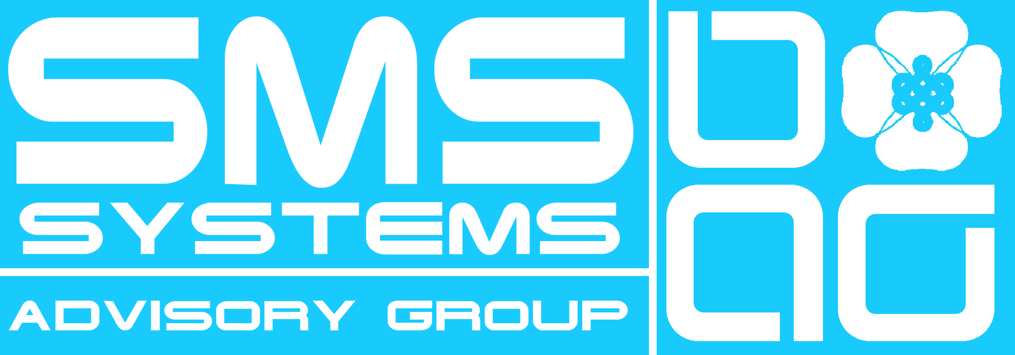 SMS-Systems Advisory Group